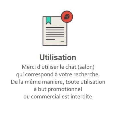 Règles du Tchat Gratuit de Rencontre-Musique.eu